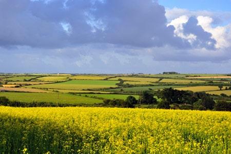 farm land sales